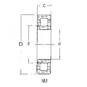 95 mm x 240 mm x 55 mm  FBJ NU419 cylindrical roller bearings