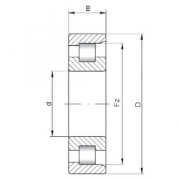 110 mm x 280 mm x 65 mm  ISO NF422 cylindrical roller bearings